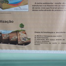 ef3_7ano_patrimonio_sociocultura_20170621(11)